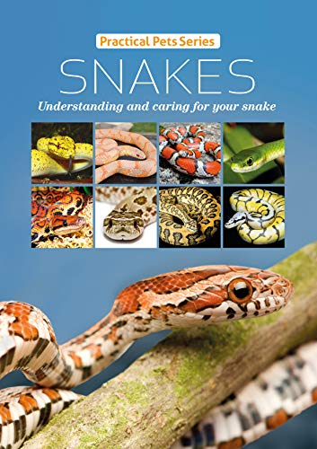 Pet Snakes - Snakes: Understanding and caring for your snake (Practical Pets Series Book 1)