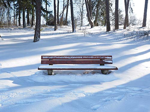 - Home Comforts Peel-n-Stick Poster of Bench Wintry Bank Snowy Vivid Imagery Poster 24 x 16 Adhesive Sticker Poster Print