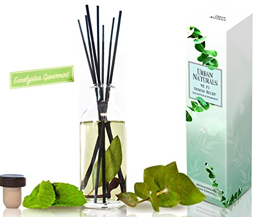 Urban Naturals Eucalyptus Spearmint STRESS RELIEF Aromatherapy Diffuser Gift Set | Fragrance your Space | Fresh Scented Room Freshener + Home Decor | Home Gift Idea. Vegan. by Urban Naturals