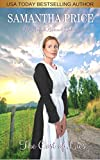 The Cost of Lies: Amish Romance