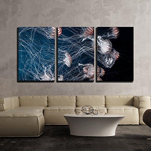 Jellyfish under the Deep Ocean x3 Panels