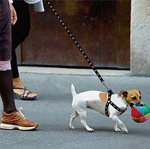 GRIVEY Pettorina per Cani 2 in 1 per Animali Domestici Regolabile Colore Nero con stoviglie di Sicurezza e guinzaglio per Cani