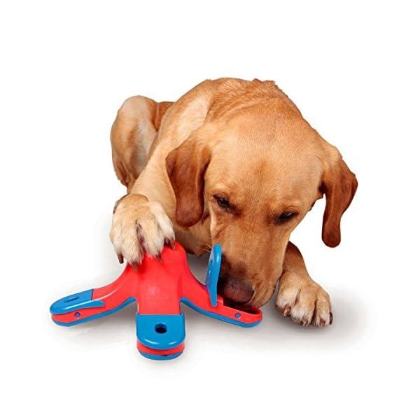 CLKJCAR Dog Training Toys, Dog Educational Toys Dog Feeder Puzzle Dog Food Toy Dog Toys Slow Feed Bowl 1