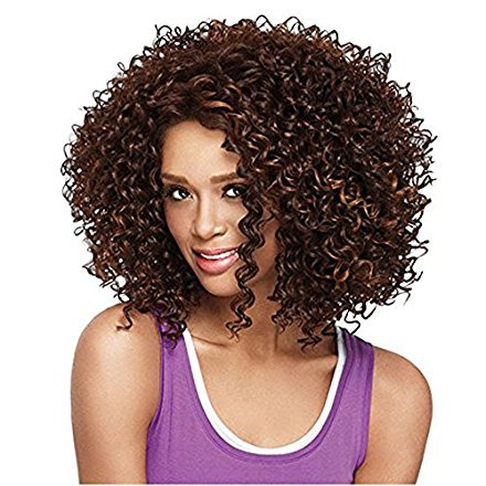 Beauty : AisiBeauty Short Kinky Curly Wigs for Black Women African American Wig Synthetic Afro Curly Hair Wigs Blonde and Brown Mixed Color Heat Resistant Wigs