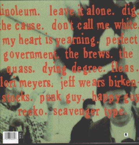 Punk in Drublic [Vinyl]