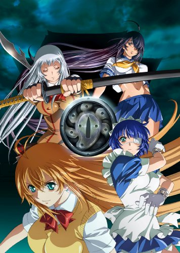 Ikki Tousen Tsuba Fighter Blood Record