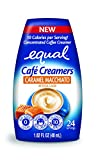low carb coffee creamer - EQUAL Café Coffee Creamers Caramel Macchiato, Low-Calorie Coffee Creamer, 1.62 Ounce (Pack of 6)