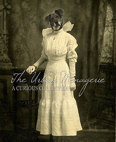 [Anthropomorphic Portrait, Dog in Dress Art Print, Multiple Sizes Available, Unframed] (Inanimate Object Costume)