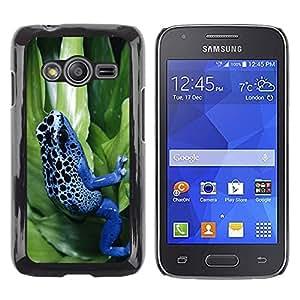 TopCaseStore / la caja del caucho duro de la cubierta de protección de la piel - Cool Neon Blue Jungle Frog - Samsung Galaxy Ace 4 G313 SM-G313F
