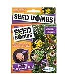 Dune Craft Seed Bombs 6/pkg-native Perennial Mix