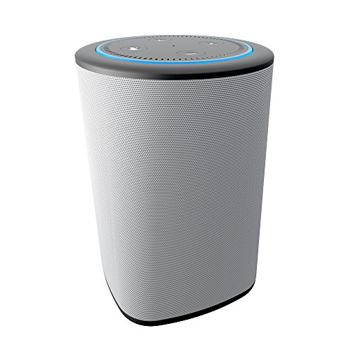 Speaker to Pair with Echo Dot
