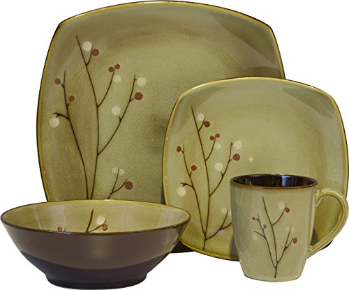 Sango 16 Piece Blossom Dinnerware Set, Brown