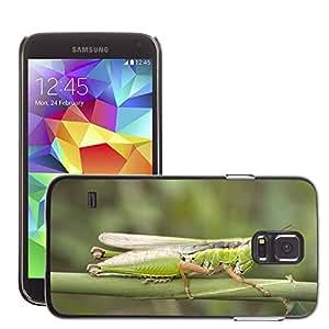 Etui Housse Coque de Protection Cover Rigide pour // M00112339 Saltamontes Migratorias Locust // Samsung Galaxy S5 S V SV i9600 (Not Fits S5 ACTIVE)