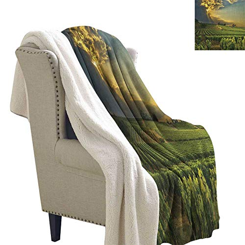 Winery Warm Breathable Comforter for Girls Kids Adults Sunset Over The Vineyards of The South of France Sunbeams Cloudscape Picture Blanket Small Quilt 60x32 Inch Green Yellow Gray