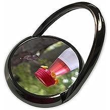 3dRose Beverly Turner Bird Photography - Hummingbird at Feeder - Phone Ring (phr_27304_1)