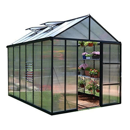 Palram Glory Hobby Greenhouse, 8′ x 12′