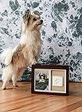 Pearhead Dog Or Cat Paw Prints Pet Memory Box