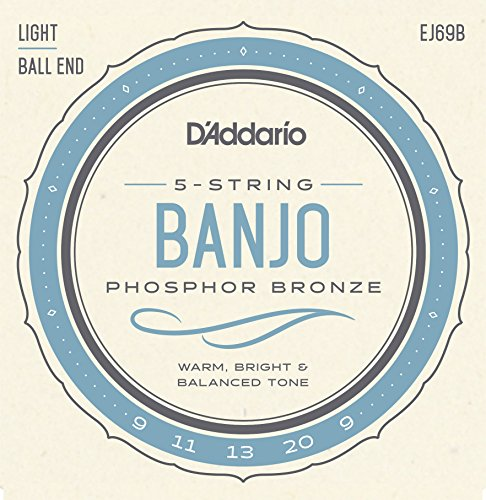 D'Addario EJ69B Phosphor Bronze 5-String Ball-End Banjo Strings, Light, 9-20