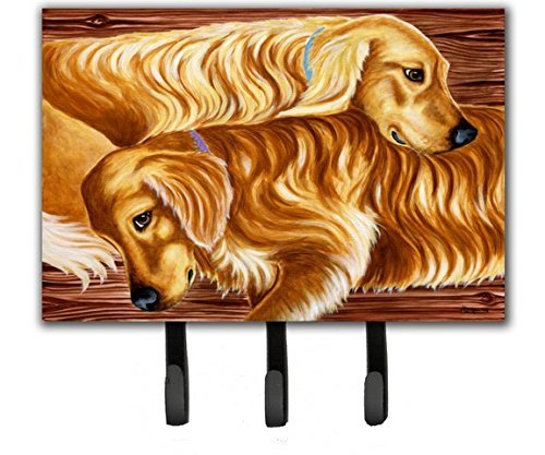 Caroline's Treasures AMB1387TH68 Zeus and Chloie The Golden Retrievers Leash or Key Holder, Triple, Multicolor Caroline's Treasures AMB1387TH68 Zeus and Chloie The Golden Retrievers Leash or Key Holder
