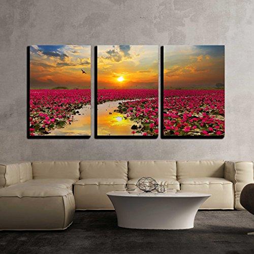 wall26 - 3 Piece Canvas Wall Art - Sunshine Rising Lotus Flower in Thailand - Modern Home Decor Stretched and Framed Ready to Hang - 16