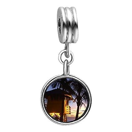 Diseño de casetas de playa Tropical salvavidas con tapa y función de cristal para fotos con