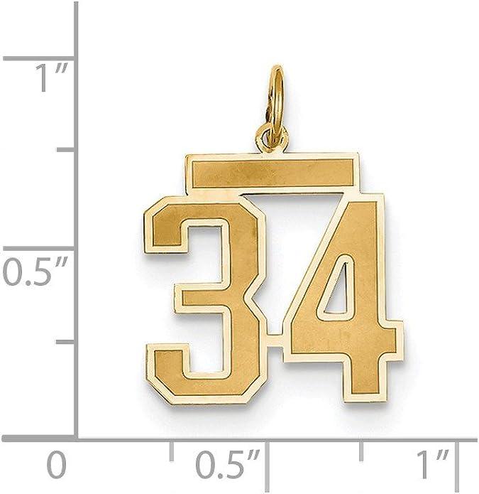 Sterling Silver Medium Satin Number 23 Charm