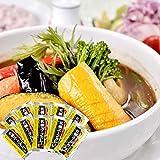 札幌 スープカレー の素 10食分 (濃縮タイプ) ソラチのスープカレー 北海道スープカレー レシピカード入り