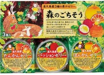 森のごちそう3種の果汁ゼリー