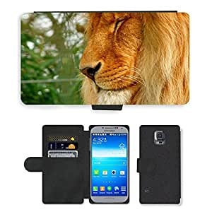 PU LEATHER case coque housse smartphone Flip bag Cover protection // M00111560 Lion Zoo Predator Animal Gato // Samsung Galaxy S5 S V SV i9600 (Not Fits S5 ACTIVE)