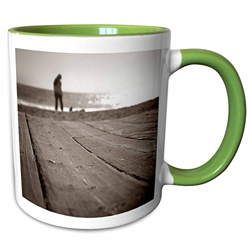 3dRose Henrik Lehnerer Designs - Travel - Boardwalk at the beach in Laguna Beach California - 15oz Two-Tone Green Mug (mug_221507_12)