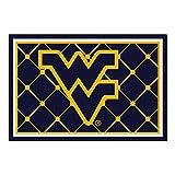 FANMATS NCAA West Virginia University Mountaineers Nylon Face 5X8 Plush Rug