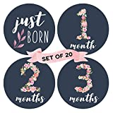 Floral Baby Monthly Milestone Stickers (Set of 20) - Birth...