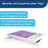 PetSafe ScoopFree Self-Cleaning Cat Litter Box Tray Refills - Non-Clumping Crystal Cat Litter - 6-Pack