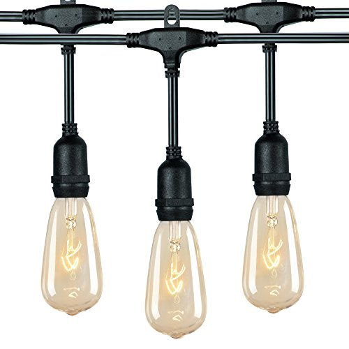 18Ft Outdoor Weatherproof String Lights with 12 Hanging Sockets & 7Watt ST40 Clear Bulbs, UL Listed E17 Base Vintage Edison Light String for Patio, Porches, Bistro, Backyard, Black Wire (Lights Party Globe)