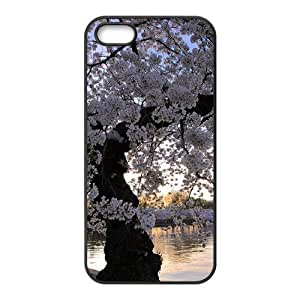 Customized Cover Case with Hard Shell Protection for iphone 6 /, case with Old trees lxa#484104
