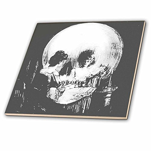 3dRose 3D Rose ct_46711_4 Is Vanity-Ghost, Halloween, Optical Illusion, Paranormal, Seasonal, Silhouette, Skeleton-Ceramic Tile inch (4), 12'' by 3dRose
