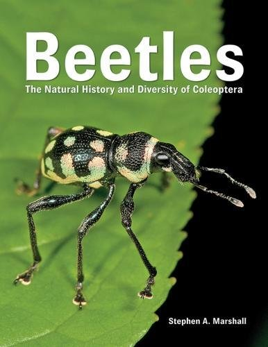 Beetles: The Natural History and Diversity of Coleoptera