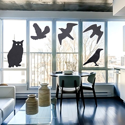 PCO Products Bird Stickers for Windows,Window Decals for Birds,Bird Window Deflectors,Window Alert,4 Pack with 10 Different Birds