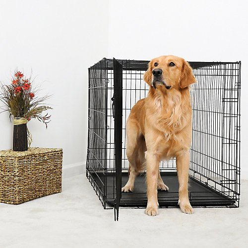 DuraCrate Folding Dog Crate 48Lx30Wx33H Review
