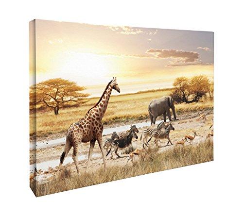 JP London CNV2209 Sunset in African Safari Giraffe Zebra Elephant Canvas Art Wall Decor, 1.5' x 2'