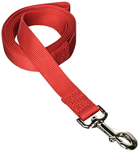 Aspen PET Products 20046 Single Nylon Pet Leash, 1-Inch 6-Feet, Red (Aspen Petmate Leash)