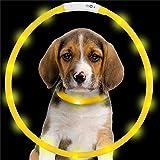 Yaojiaju Rechargeable LED Luminous Dog Collar Waterproof Adjustable Flashing Glowing Pet Safety Collar Yellow