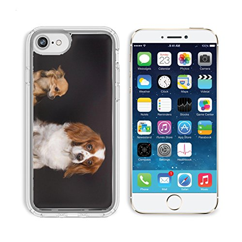 MSD Premium Apple iPhone 6 iPhone 6S Clear case Soft TPU Rubber Silicone Bumper Snap Cases Two dogs under black background ∶ cavalier king charles and chihuahua Image 37140673 Customized Tablemats Sta