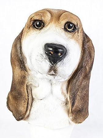 The Rubber Plantation TM 619219293402 - Máscara de yeso de látex para perro, diseño realista
