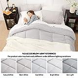 Bedsure Down Alternative Comforter Twin XL- All