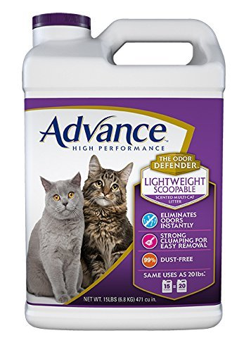 Do You Have To Use More Lightweight Cat Litter