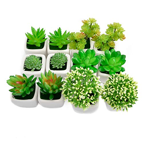 AIFUSI 12 Pcs Artificial Succulents Mini Succulent Plants Fake Green House Plants with Ceramic Pots for Birthday Home Decor Indoor Wall Garden Hotel Desk by AIFUSI
