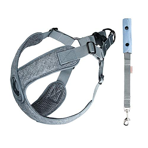 - LZMXXQ Dog X-Type Chest Strap Reflective Strip Chest Strap Small and Medium Dog Chain Dog Leash with Breathable Suit Pet Supplies (Color : C, Size : M)