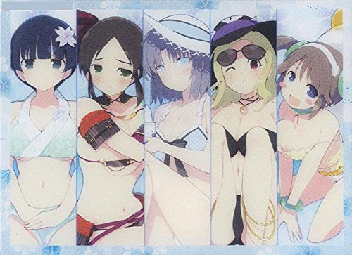 Senran Kagura Vs Gessen Girls Academy Anime Character Card Game