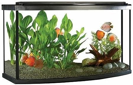 Fluval Premium Kit d'aquarium avec LED 170 l